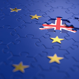No Deal Brexit – Concern expressed whether trading on WTO rules will be possible…